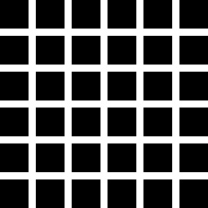 Black Dots Illusion