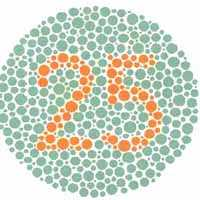 Color Blindness Test 1